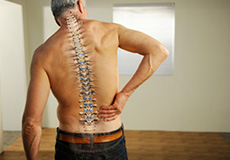 Spinal Injuries at Work